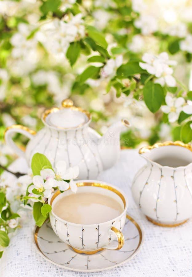 Английский чай стоковая фотография