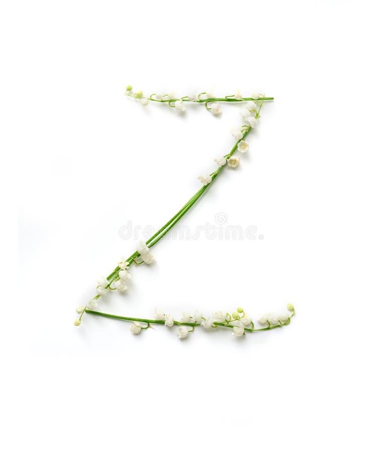 Английское письмо z в алфавите колоколов цветков Литерность каллиграфии стоковая фотография rf
