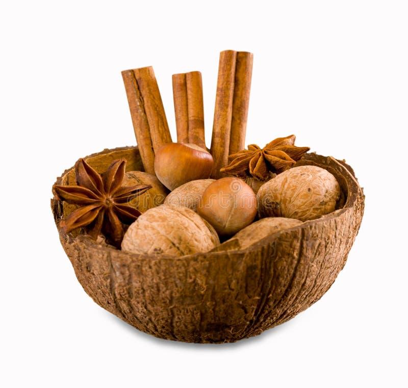Анисовка грецких орехов, фундуков, циннамона и звезды в раковине кокоса стоковое изображение