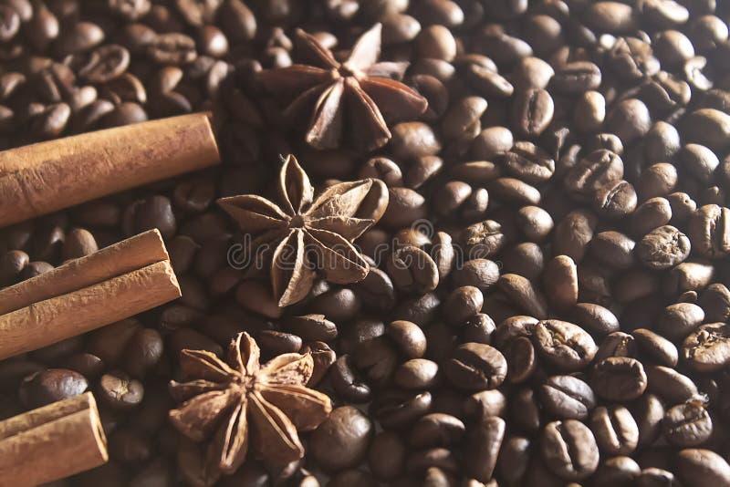 Анисовка звезды и ручки циннамона на зажаренных в духовке кофейных зернах стоковое фото
