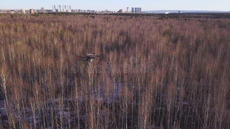 Антенна для вертолета трутня завиша в небе над лесом и городских кварталах на предпосылке r Небольшое quadrocopter стоковое изображение