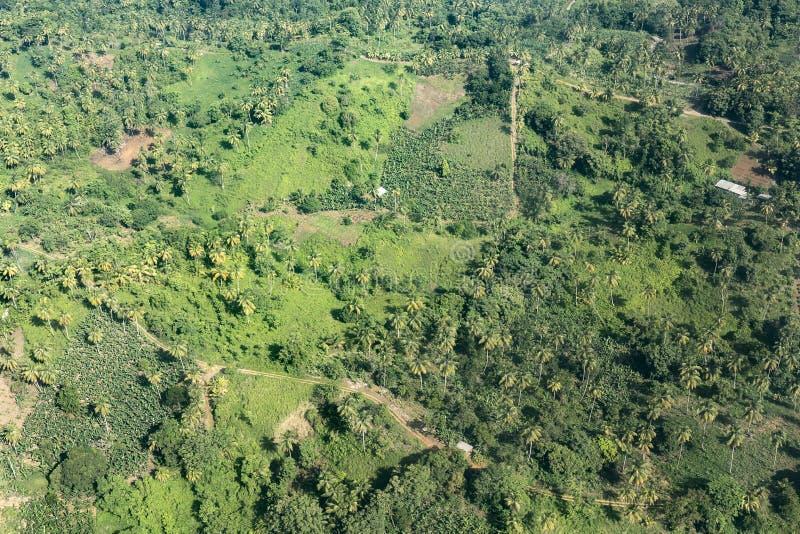 Антенна джунглей, побережья и океана в Доминике стоковая фотография