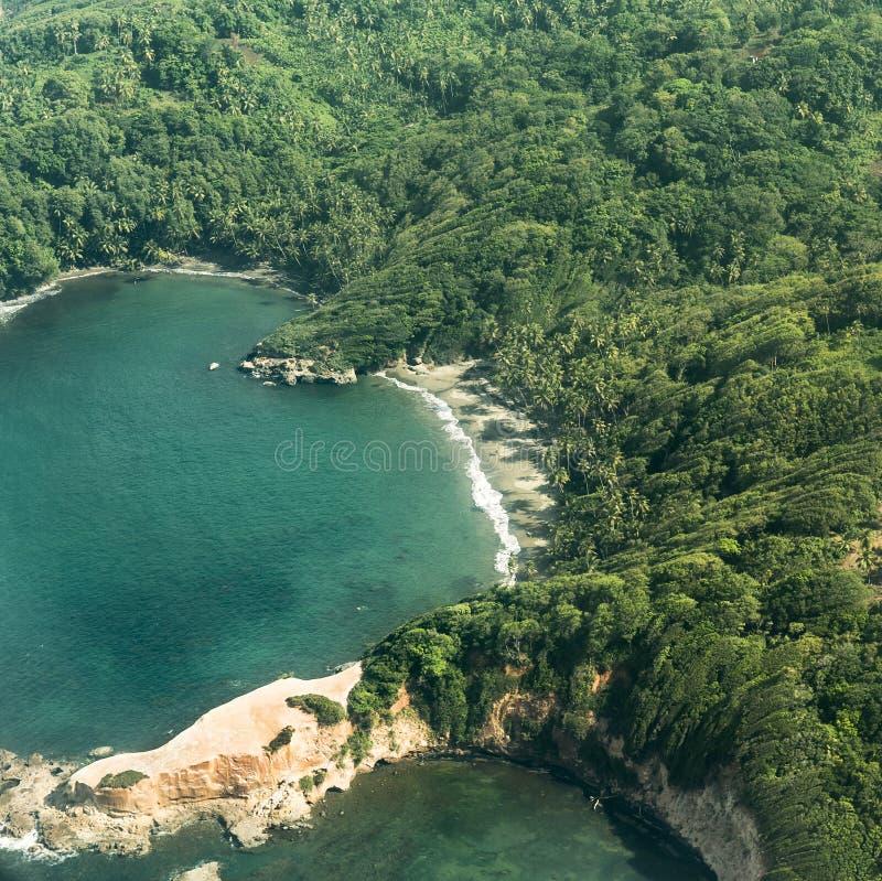 Антенна джунглей, побережья и океана в Доминике стоковые изображения rf