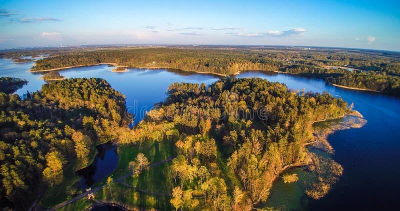Антенна озера и леса стоковое изображение