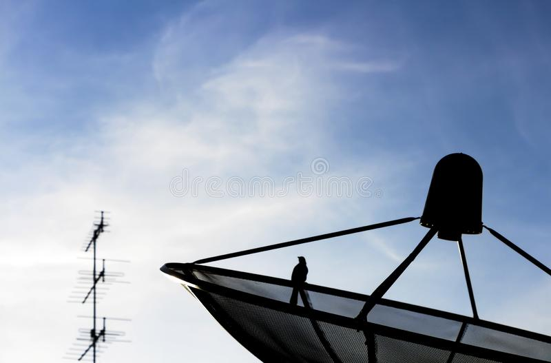 Антенна ТВ ang спутниковой антенна-тарелки с голубым небом на предпосылке стоковая фотография rf