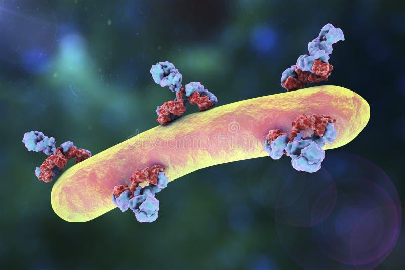 Антитела атакуя бактерию иллюстрация вектора