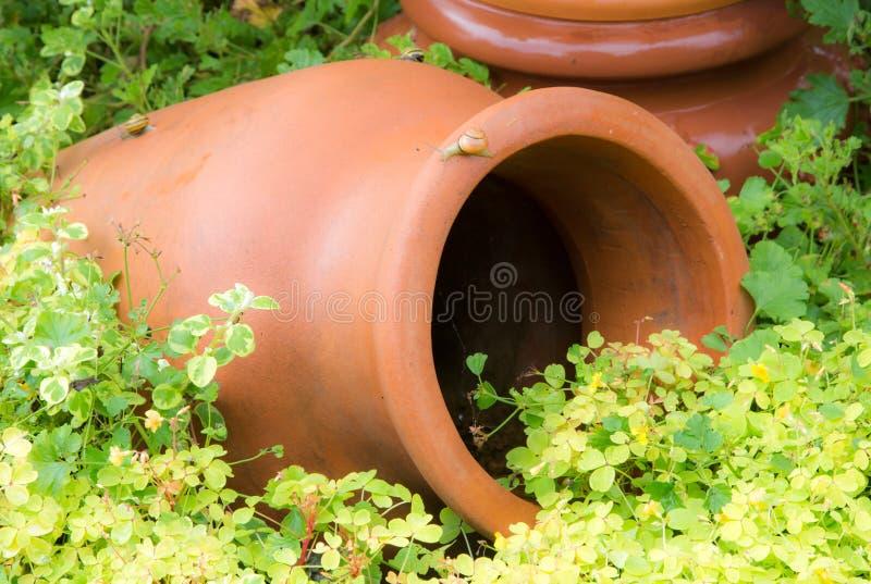 Античная амфора в саде стоковые изображения rf