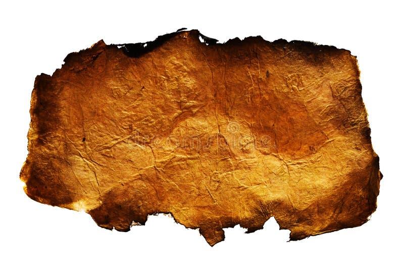 античная бумага стоковое изображение rf