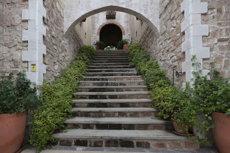 Античная каменная лестница в саде стоковые изображения rf
