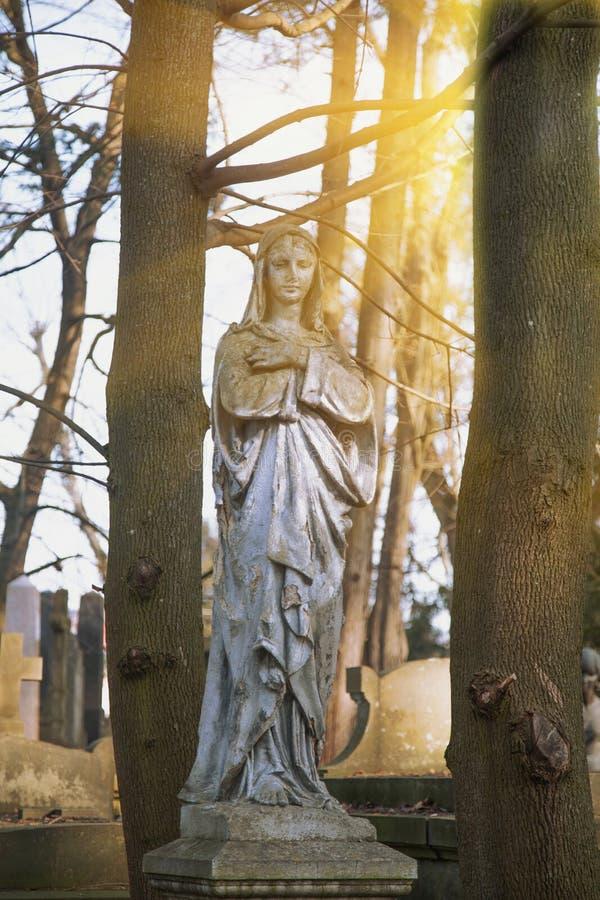 Античная статуя девой марии моля против предпосылки леса в солнечном свете стоковые фото