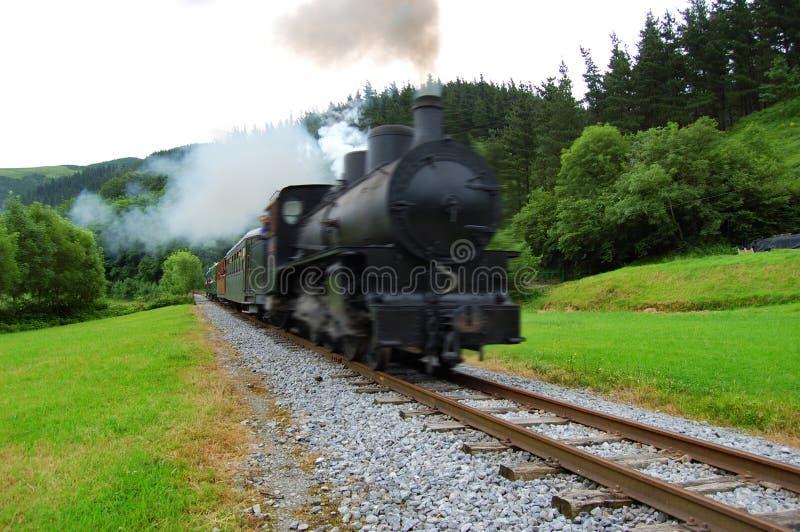 античный поезд пущи скрещивания стоковое изображение