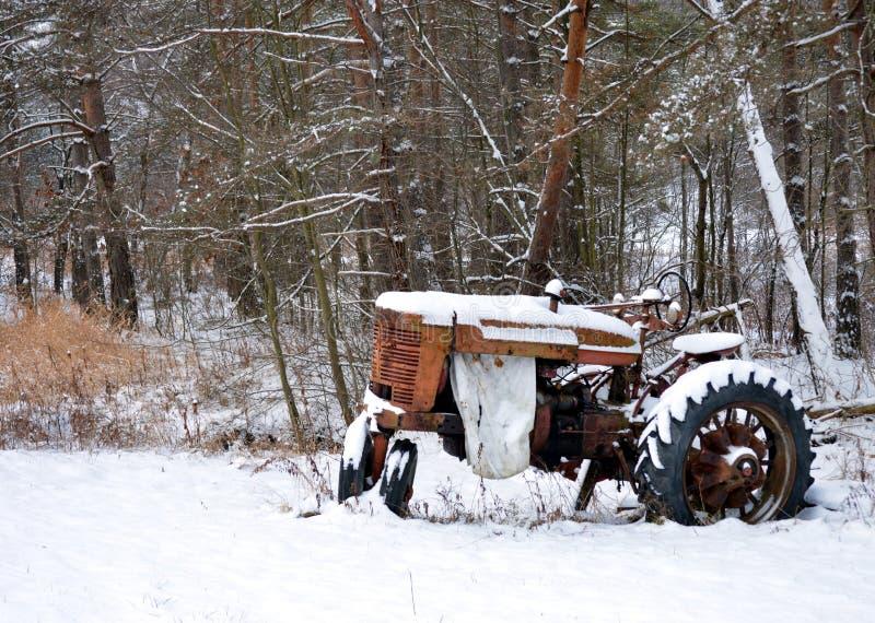 Античный трактор забытый в древесинах стоковая фотография