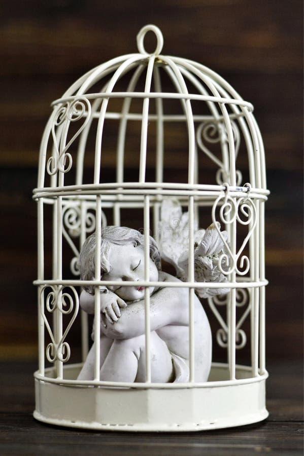 Анджел в birdcage стоковое фото rf