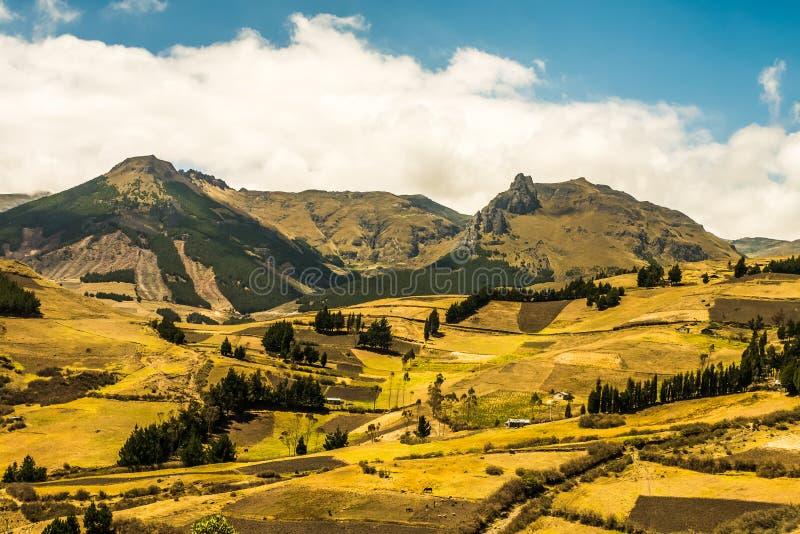 Андийский ландшафт Южная Америка стоковые фотографии rf