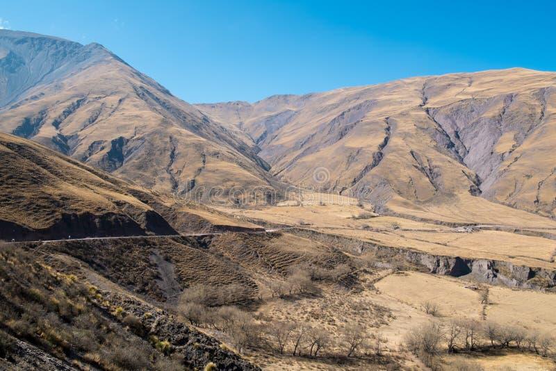 Андийский ландшафт стоковые фото