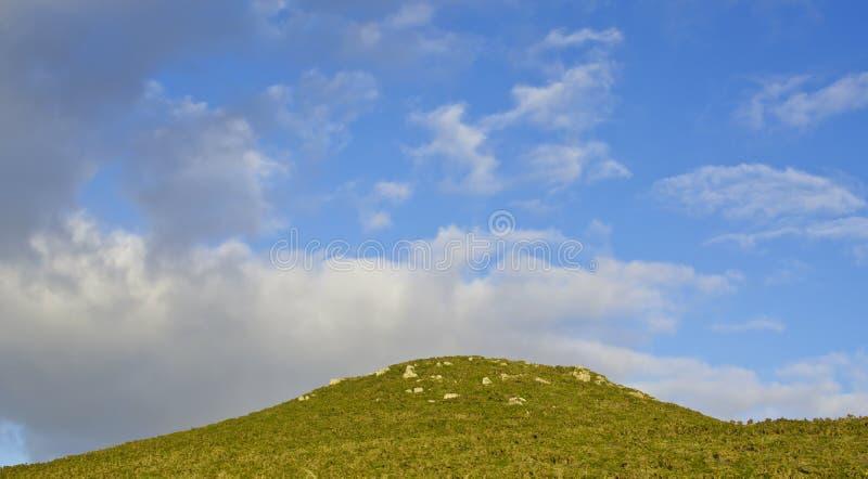ландшафта фокуса поля дня облаков сини небо выставки заводов движения должного польностью зеленого маленькое не некоторые скачут  стоковая фотография rf