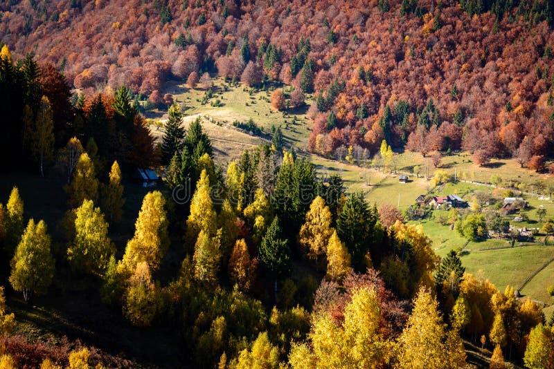 ландшафт Румыния осени стоковые фото