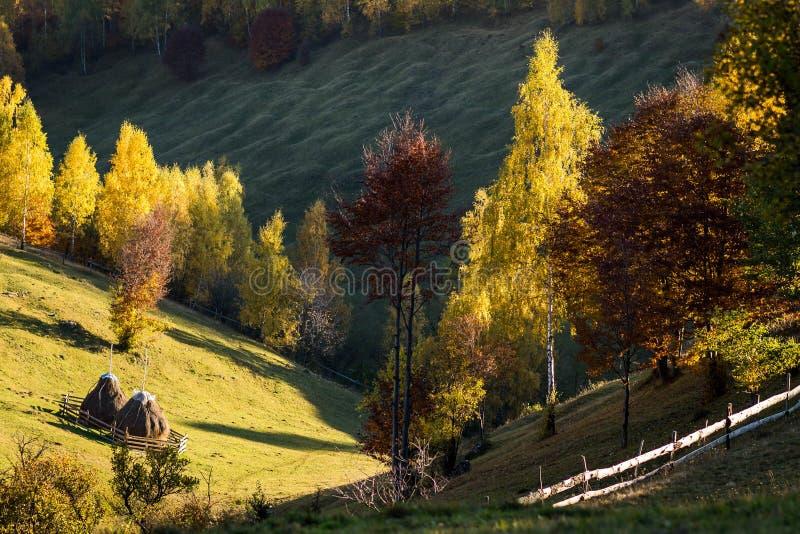 ландшафт Румыния осени стоковые изображения rf