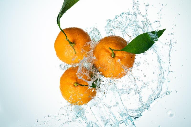 Апельсины мочат выплеск стоковые изображения