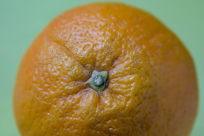 Апельсин пупка стоковые изображения rf