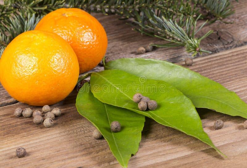 Апельсины и кивиы стоковые фото