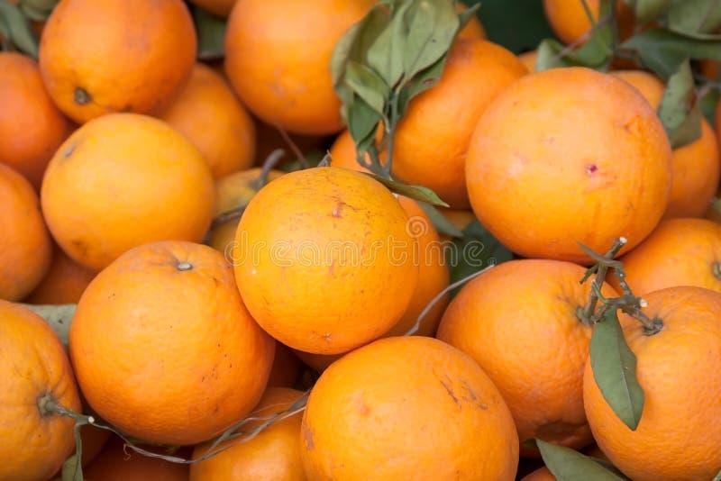 Download Апельсины стоковое фото. изображение насчитывающей свеже - 40582924