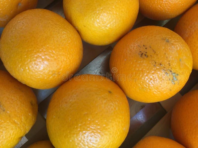Апельсины стоковое изображение