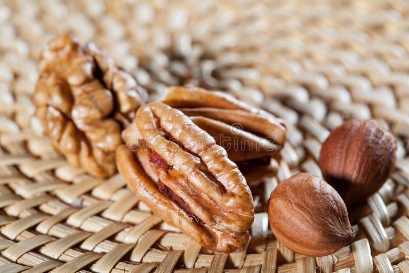 Аппетитные грецкие орехи и фундуки стоковые изображения rf
