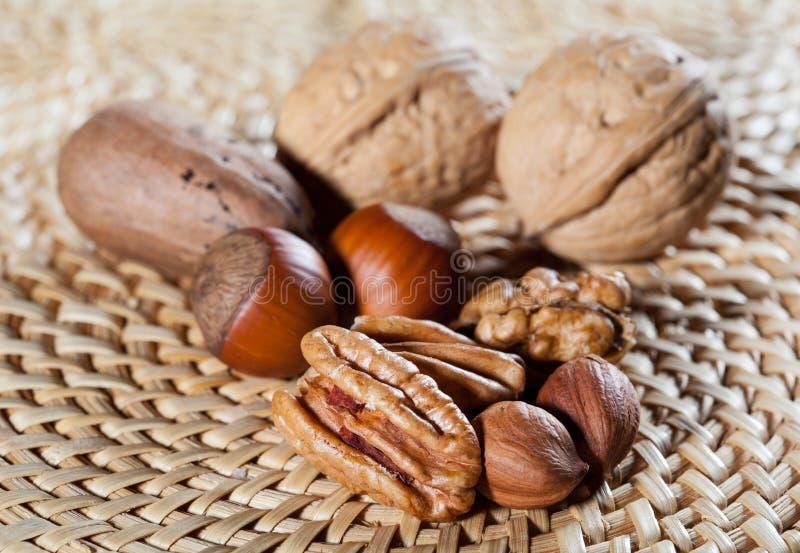 Аппетитные фундуки и грецкие орехи стоковые фото