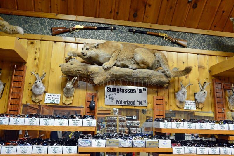 Аптека стены, Южная Дакота, США стоковая фотография rf