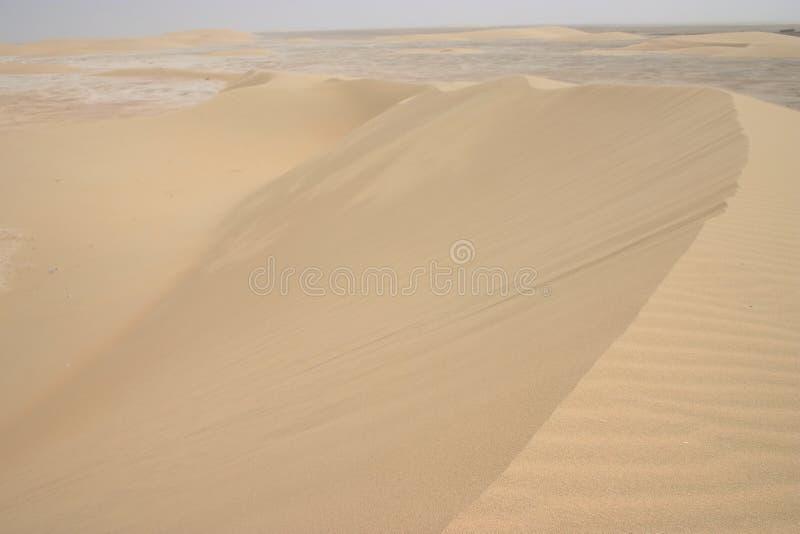 аравийская пыльная буря стоковая фотография rf