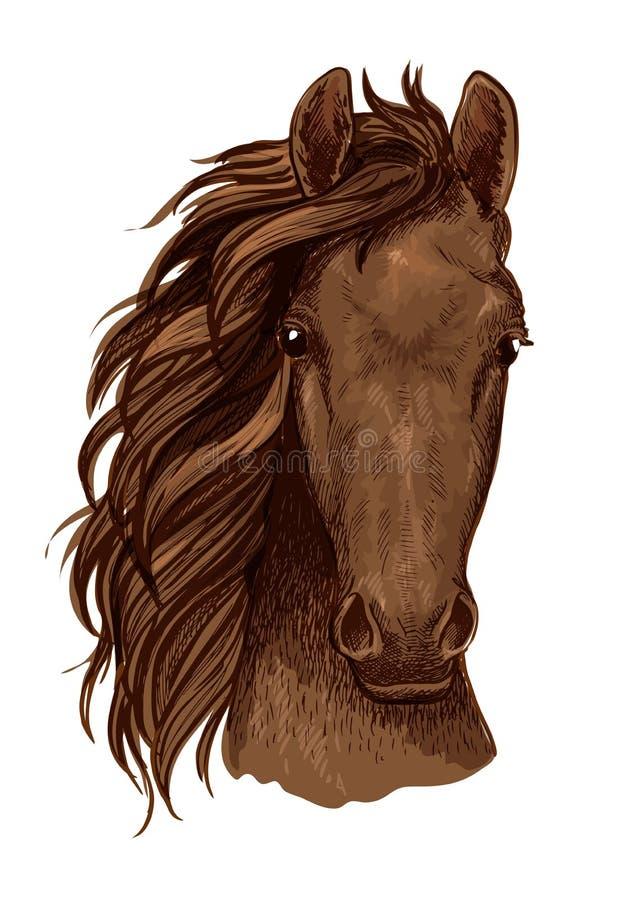Аравийский коричневый портрет вектора жеребца иллюстрация вектора