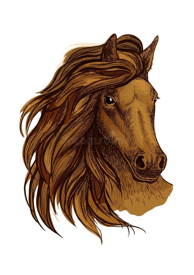 Аравийский коричневый портрет лошади иллюстрация вектора