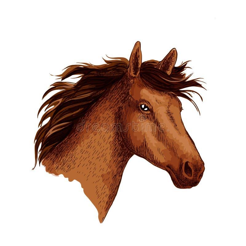 Аравийский коричневый символ эскиза вектора головы дикой лошади бесплатная иллюстрация