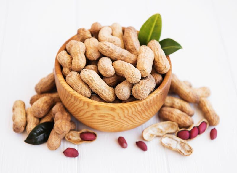 Арахисы в ореховой скорлупе стоковые изображения rf