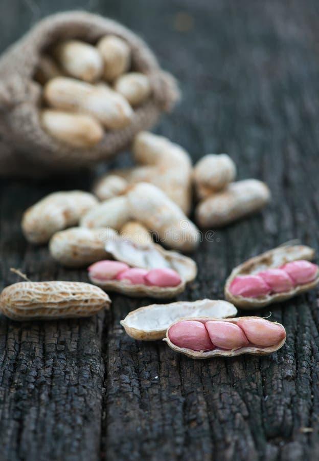 Арахис семени на деревянной предпосылке стоковые изображения rf