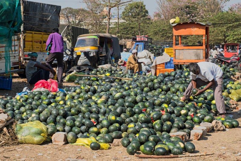 Арбузы на продаже в Mysuru, Индии стоковое фото