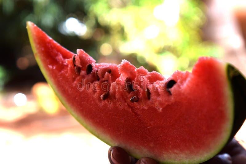 Арбуз для вас вкусный с семенами стоковые фото