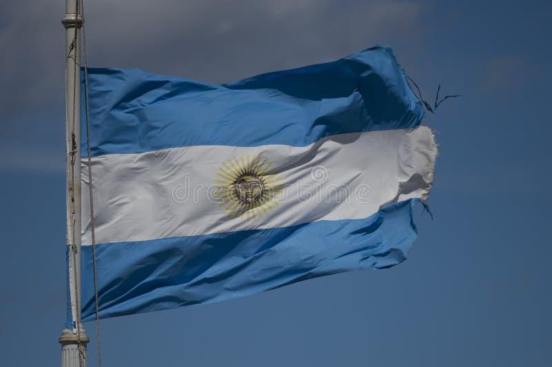 Аргентинский развевать флага стоковые фотографии rf