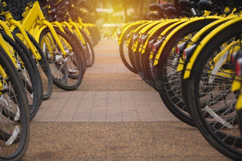 Арендные велосипеды в городском Делят велосипед публики велосипеда стоковые изображения rf