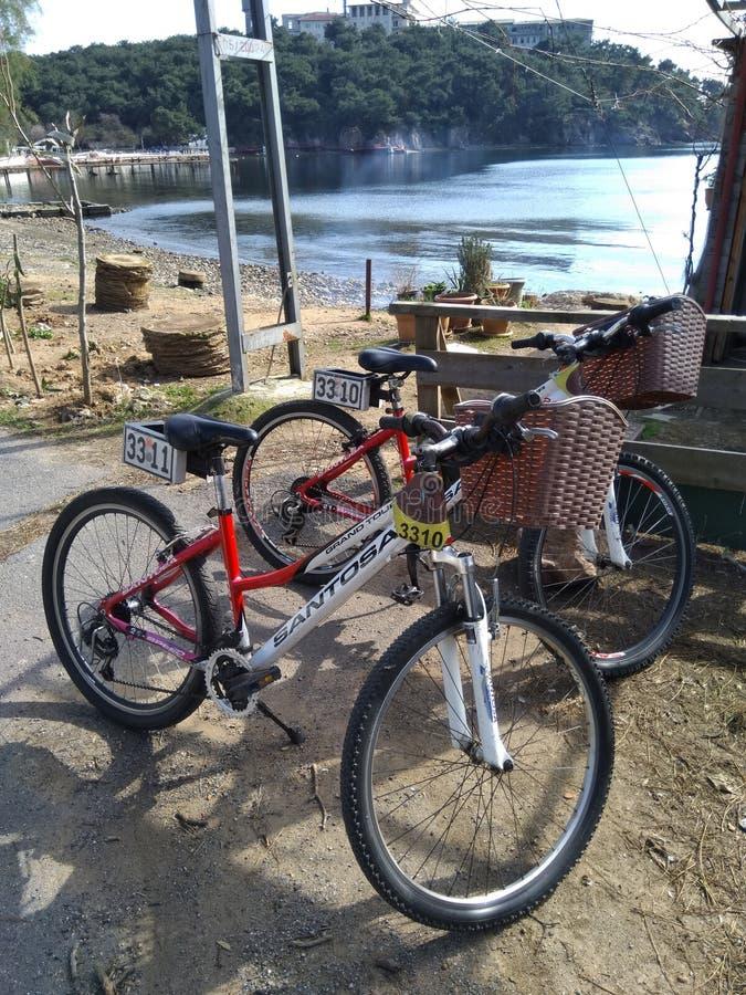 2 арендных велосипеда ждать они владелец около пляжа стоковое изображение rf