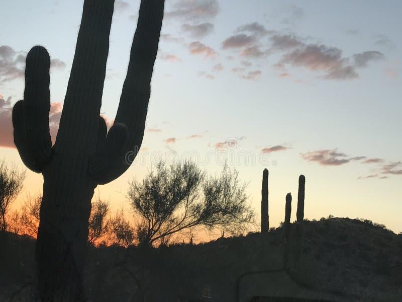 Аризона красивейшая стоковые фотографии rf