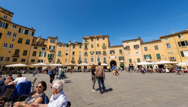 Аркада Anfiteatro - квадрат в Лукке Тоскане Италии стоковые изображения rf