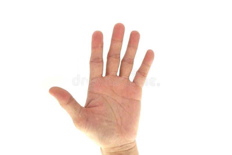 Армия/сигналы рукой Сват тактические/сигнал: 5 5 изолированных на белой предпосылке стоковые фото