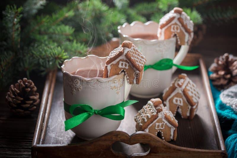 Ароматичные коттеджи пряника с вкусным какао в вечере зимы рождества стоковое фото