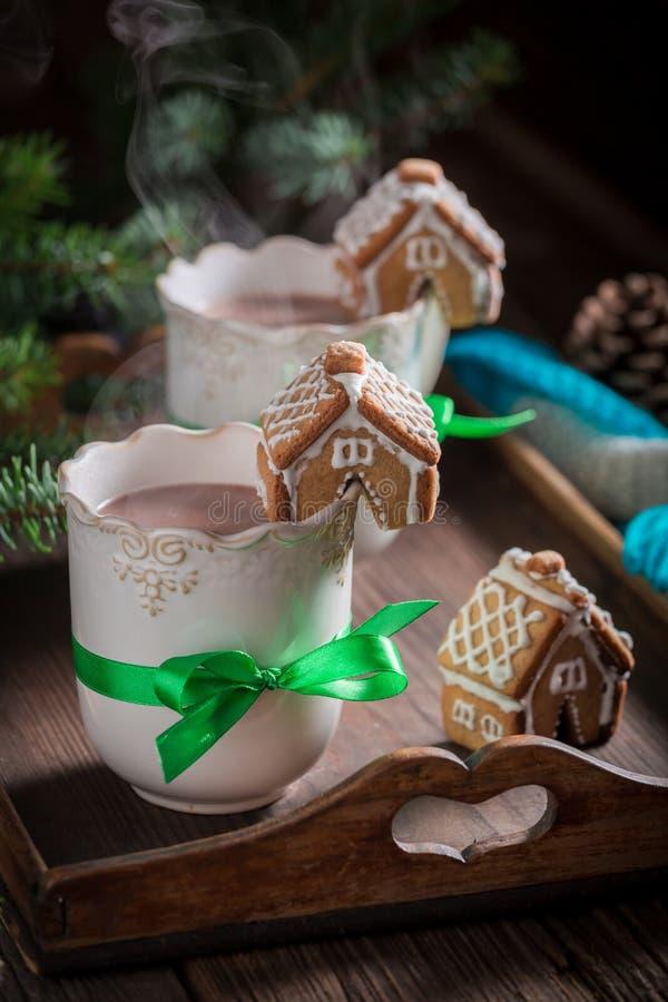 Ароматичные коттеджи пряника с вкусным какао для рождества стоковое фото rf