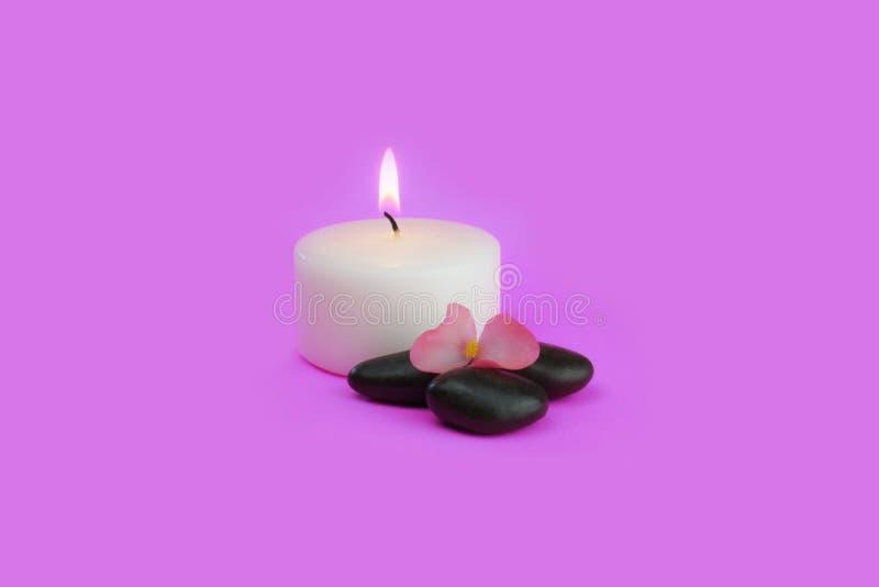 Ароматичные свеча и камни с цветком на розовой предпосылке стоковое изображение rf