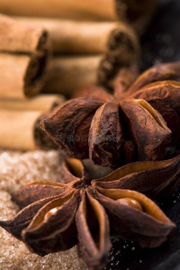 ароматичный коричневый сахар специй стоковые изображения