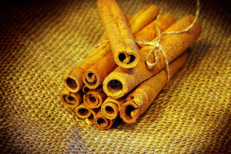 ароматичный циннамон стоковое изображение