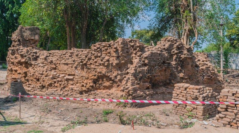 Археологическая область для того чтобы изучить историю там никакой барьер к аутсайдерам стоковые фотографии rf